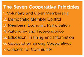 the cooperative principle thoughts on its